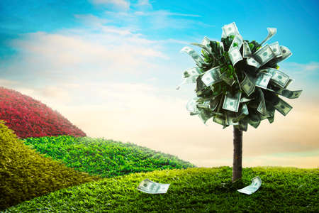 Photo for photo of tree made of dollars - Royalty Free Image