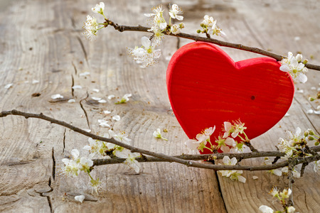 Photo pour red heart shape made of wood with blooming branches from plum on a rustic wooden background, love symbol for valentine's day or mothers day - image libre de droit