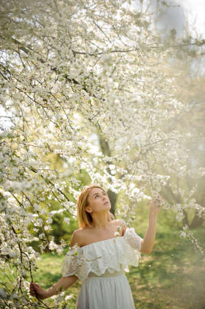 Photo pour Beautiful blonde girl, dressed in a white dress with a open shoulders, standing between branches of white blossom tree and looking up - image libre de droit