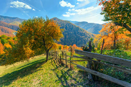 Foto de Colorful autumn landscape scene with fence in Transylvania mountain-Romania - Imagen libre de derechos