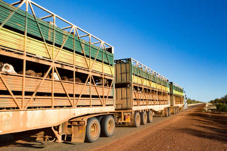 Photo for Australian Road Train - Royalty Free Image