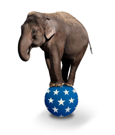 Domesticated Asian Elephant balancing on a Circus ball.