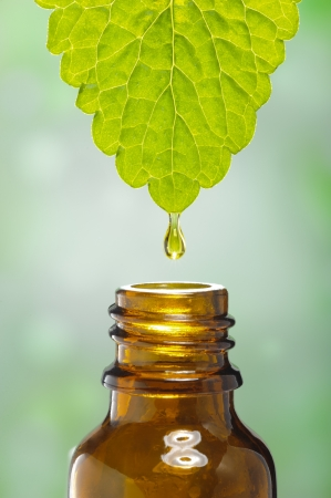 Photo for fluid drops down from leaf as symbol for alternative herbal medicine - Royalty Free Image