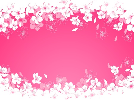 Spring background with cherry flowers