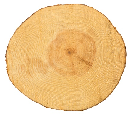 Photo pour Sawn pine wood isolated on white background - image libre de droit