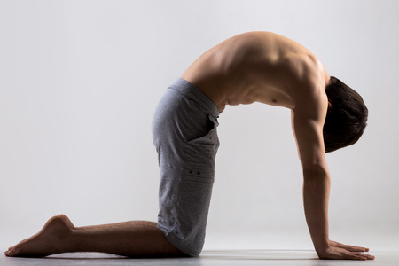 Foto de Athletic muscular young man working out, yoga, pilates, fitness training, bend in Cat yoga Pose, Marjaryasana, asana often paired with Cow Pose on the inhale, gray background, low key shot - Imagen libre de derechos