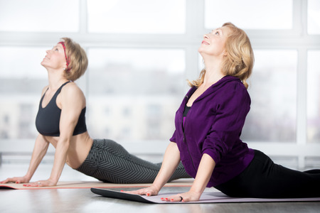 Foto de Fitness, stretching practice, group of two attractive smiling fit mature women in sportswear working out in sports club, doing Cobra posture, backbend exercise, bhudjangasana (Bhujangasana) in class - Imagen libre de derechos