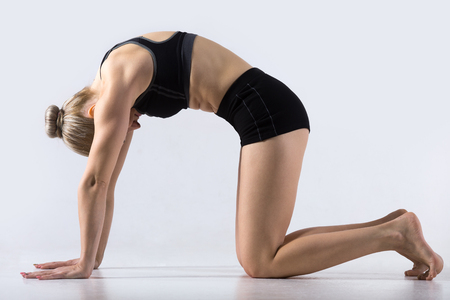 Photo for Sporty beautiful young woman practicing yoga, working out, doing Cat Pose, Marjaryasana, exercise for flexible spine and shoulders, asana paired with Cow Pose on the inhale, studio - Royalty Free Image