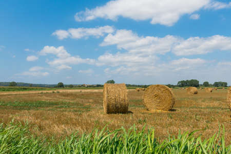 Photo pour Typical landscape of the Emporda in Catalonia: Round bales of straw on a stubble field in Catalonia, Spain - image libre de droit