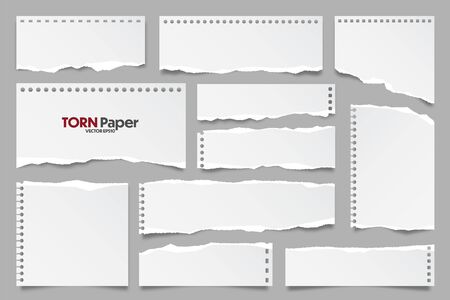 Illustration pour White ripped paper strips collection. Realistic paper scraps with torn edges. Sticky notes, shreds of notebook pages. Vector illustration. - image libre de droit