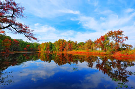 Photo for High Dynamic Range photo of Autumn colors reflecting in a pond next to the Chesapeake Bay in Maryland - Royalty Free Image