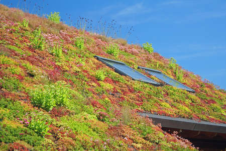 Foto de greeny Roof top view. - Imagen libre de derechos