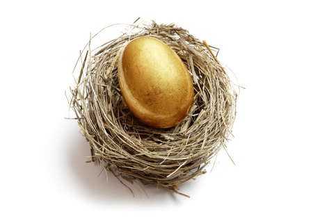 Foto de Gold nest egg concept for retirement savings and financial planning - Imagen libre de derechos