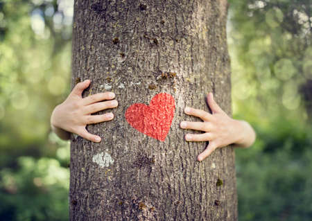 Photo for Tree hugging, little boy giving a tree a hug with red heart concept for love nature - Royalty Free Image