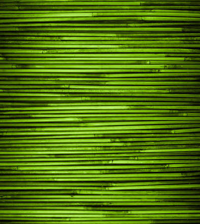 Photo for Green bamboo texture with natural patterns, close up - Royalty Free Image