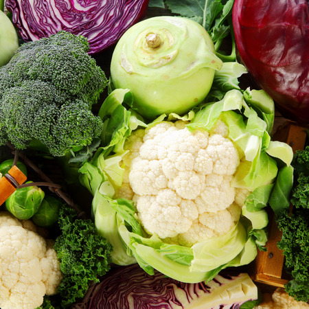 Healthy background of cruciferous vegetables of the Brassica family with cauliflower, broccoli, kohlrabi, cabbage, kale and brussels sprouts