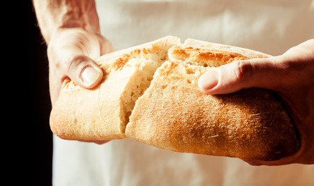 Foto de Man breaking a loaf of crusty freshly baked white bread with his hands as he prepares to enjoy a lunchtime snack, close up view of his hands - Imagen libre de derechos