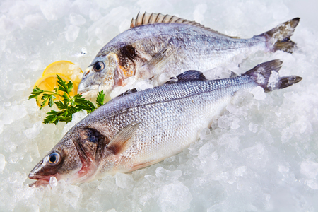 Foto de High Angle Full Length View of Raw Fresh Fish Chilling on Cold Bed of Ice with Herb Garnish and Lemon Slices - Imagen libre de derechos