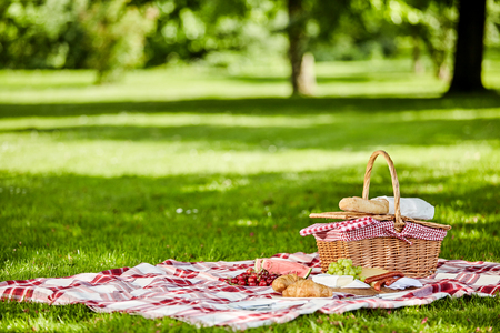 Photo pour Delicious picnic spread with fresh fruit, bread, spicy sausage and cheese spread out on a red and white checkered cloth in a lush spring park - image libre de droit