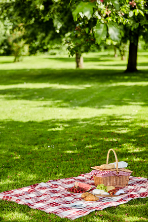 Photo pour Enjoying a healthy outdoor spring picnic with a red and white checked cloth on green grass spread with fresh fruit, sausages cheese and bread alongside a wicker hamper - image libre de droit