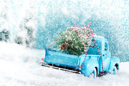 Photo for Snow countryside with christmas tree truck driving home - Royalty Free Image