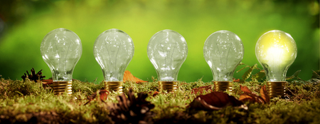 Photo for Panorama banner with a row of light bulbs standing in a bed of moss over a blurred green background with just the globe on the right glower in a concept of eco friendly power and energy - Royalty Free Image