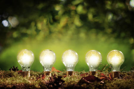 Photo for Five glowing eco friendly efficient light bulbs standing in a row in moss over a green outdoors background with copy space above in an environmental concept - Royalty Free Image