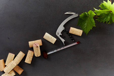 Photo pour Wine making equipment including corks, thermometer, bottle opener and green grape leaves isolated on a dark background with copy space. - image libre de droit