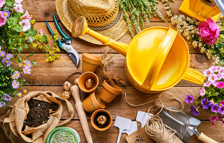Photo pour Assortment of garden tools and colorful spring plants for potting into little terracotta flowerpots on a rustic wood background viewed from above - image libre de droit