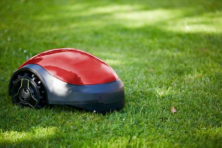 Photo pour Robot lawn mower on summer meadow in the garden with copy space - image libre de droit