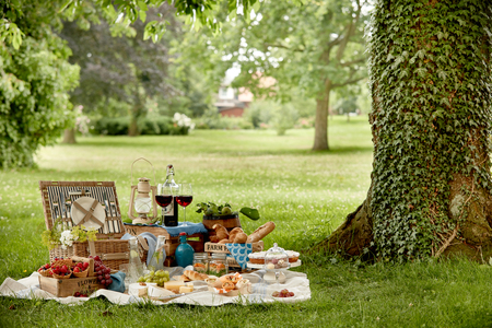 Photo pour Outdoors lifestyle picnic in a lush green park with a tasty selection of fresh fruit, bread, pickles, cake, wraps, wine and infused water in a hamper on grass - image libre de droit