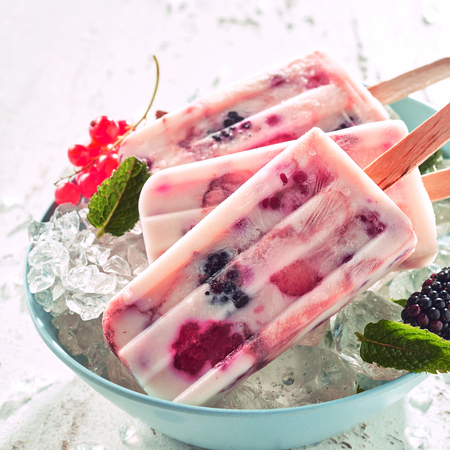 Photo for Healthy frozen yogurt and berry popsicles with fresh blackberries and red currant ingredients on a bowl of ice chilling on a buffet - Royalty Free Image