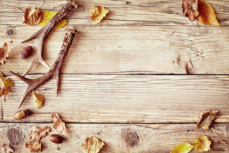 Photo for Old rustic wood background with antlers and a border of colorful yellow and withered autumn leaves around central copy space - Royalty Free Image