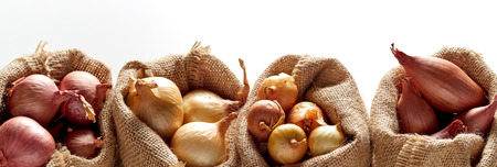 Photo pour Row of sacks with different kinds of onion, sorted in different bags, placed against white background - image libre de droit