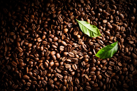 Foto de Dark roasted coffee bean background texture with heavy vignette and two fresh green leaves in the corner in a full frame view - Imagen libre de derechos