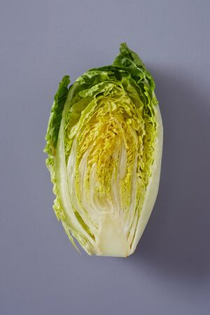 Photo for Cross section of fresh Chinese Cabbage or Napa Cabbage showing the arrangement of the crinkly green leaves over grey - Royalty Free Image
