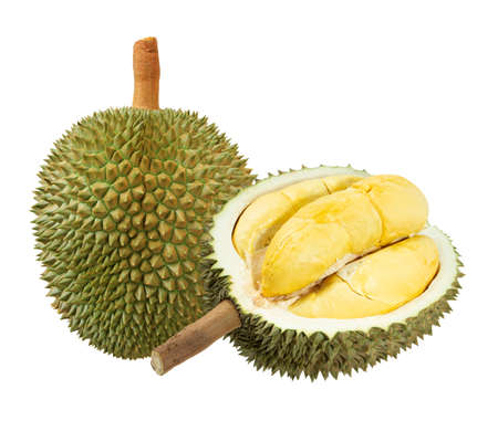 Photo for Closeup of durian fruits isolated on white - Royalty Free Image