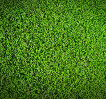 Photo pour Green grass nature background texture - image libre de droit