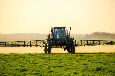 Photo for Tractor with high wheels is making fertilizer on young wheat. The use of finely dispersed spray chemicals. Tractor on the sunset background. - Royalty Free Image