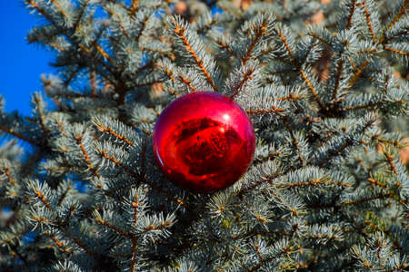Foto de Tinsel and toys, balls and other decorations on the Christmas Christmas tree standing in the open air. Decorations New Year tree. - Imagen libre de derechos
