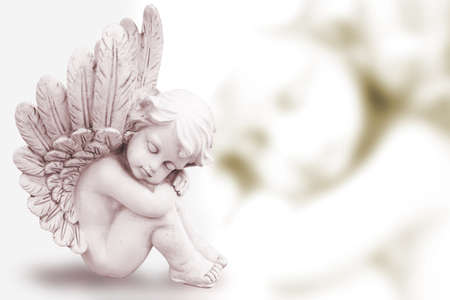 Photo for Dreaming Angel  - Royalty Free Image