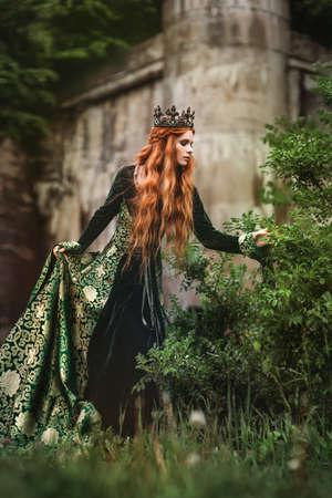 Photo pour Ginger queen near the castle - image libre de droit