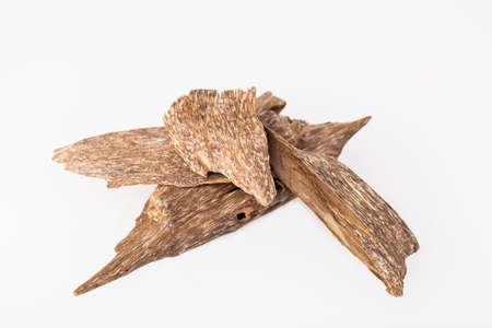 Photo for Agarwood, also called aloeswood, oudh, incense chips - Royalty Free Image