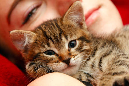 Love between girl and little tabby cat