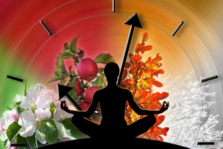 Photo pour Female yoga figure against collage of pictures representing four seasons of the year  Circle of life and passing time concept  - image libre de droit