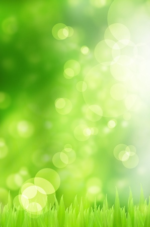 Photo pour Spring nature background with grass and bokeh lights  - image libre de droit