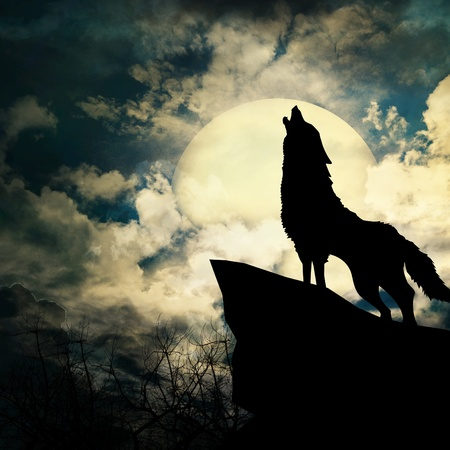 wolf in silhouette howling t mural