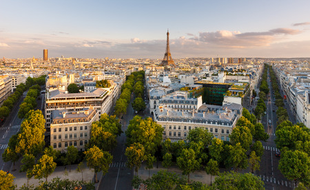 Paris from above showcasing the capital city