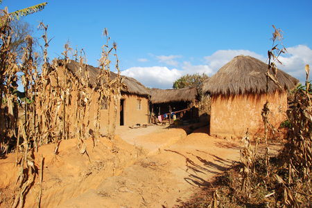 Foto de Rural house in Pomerini in Tanzania - Africa - Typical house peasant of the rural area of Pomerini in Tanzania - Imagen libre de derechos
