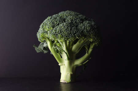 A head of broccoli, tree shaped and standing upright on black surface against black background. Lit to create dark, moody effect and strong contrast of light and shade.